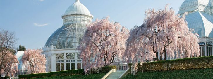 NY Botanical Garden - Free Grounds Admission Saturdays