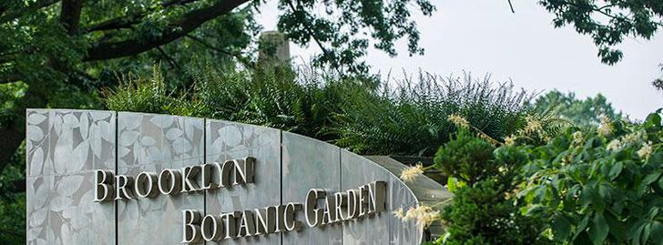 Brooklyn Botanic Garden Free Admission Thursdays (Winter Hours)